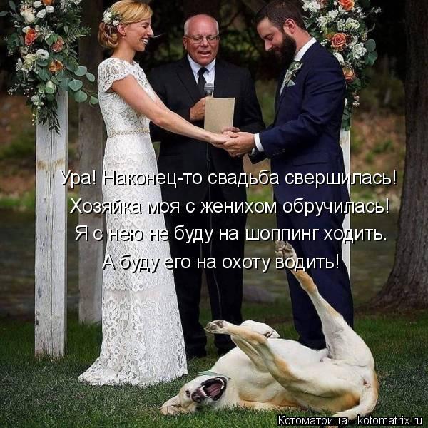 kotomatritsa_P (600x600, 263Kb)