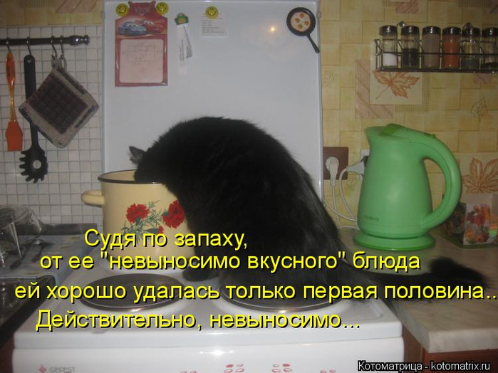 kotomatritsa_L (700x524, 342Kb)