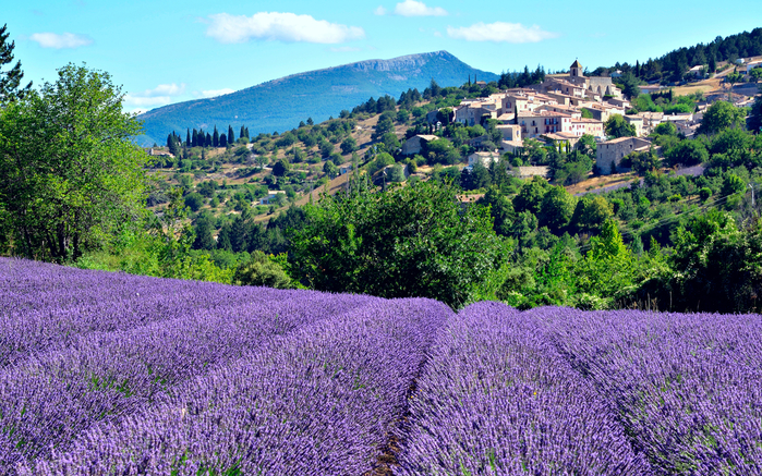 France_Houses_Fields_Lavandula_Aurel_527870_2880x1800 (700x437, 595Kb)