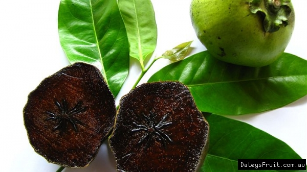 3577132_BlackSapote3570 (600x337, 151Kb)