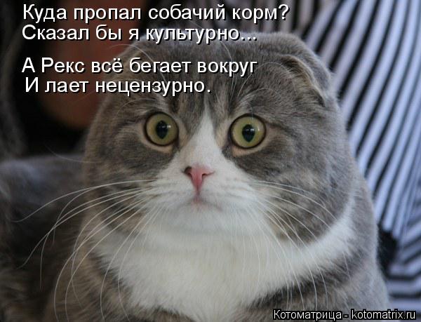 kotomatritsa_2O (600x459, 165Kb)