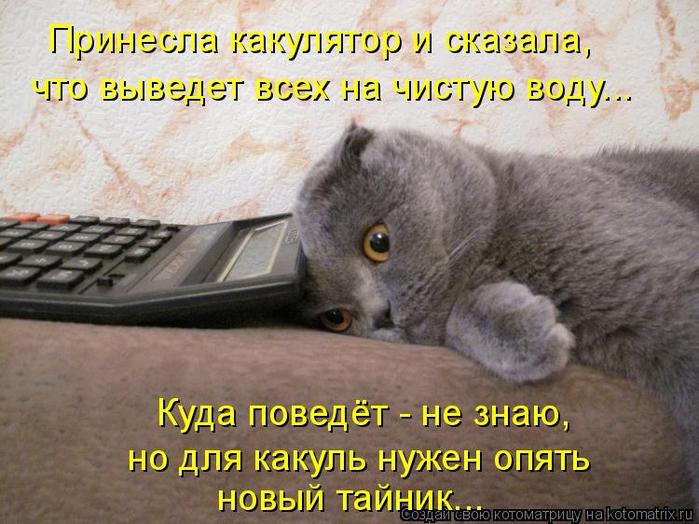 kotomatritsa_S (700x524, 399Kb)
