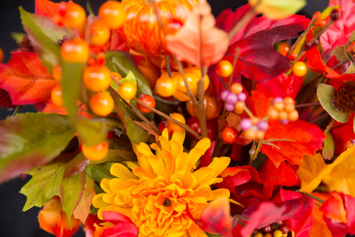 fall-flowers-2716514_1280 (700x466, 418Kb)