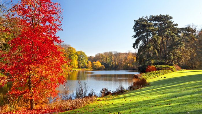 autumn-park-landscape-lake-2724 (700x393, 489Kb)