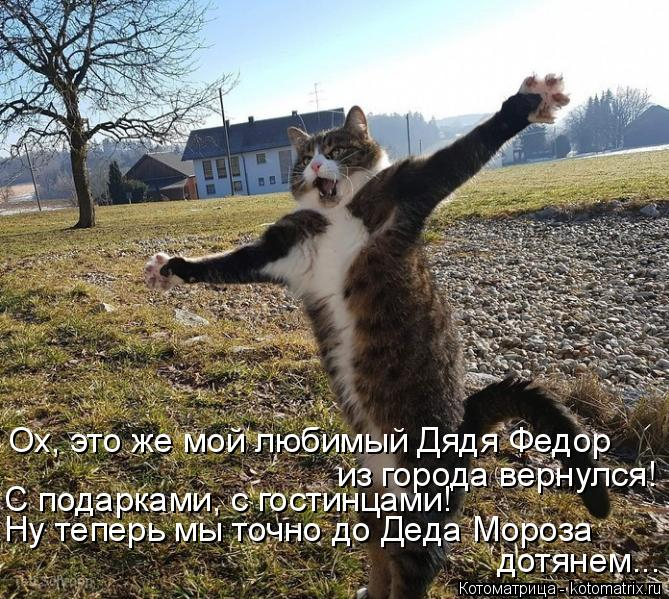 kotomatritsa_Bt (669x599, 385Kb)