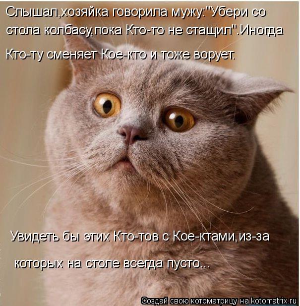 kotomatritsa_R (1) (605x617, 284Kb)