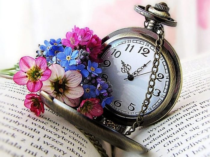 flowers-time-book-spring-watch-object-flower-hd-quality-e1555480034834 (700x522, 86Kb)