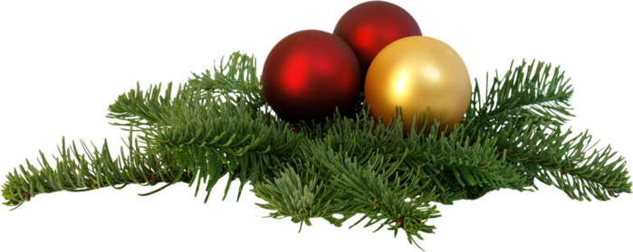 92-929171_christmas-branch-png-transparent-image-christmas-day (700x279, 251Kb)