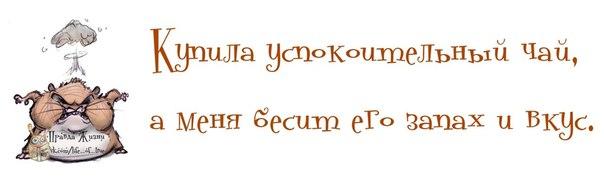 1376102297_frazochki-4 (604x185, 66Kb)