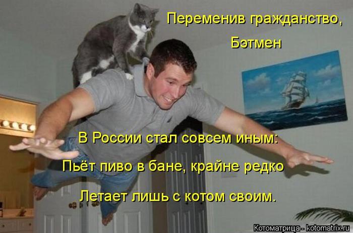 kotomatritsa_PJ (700x462, 283Kb)