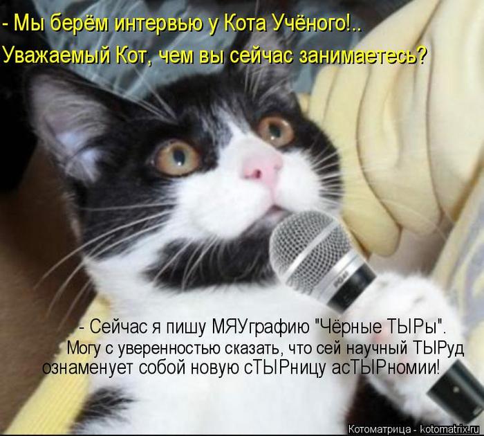 kotomatritsa_bW (700x630, 375Kb)
