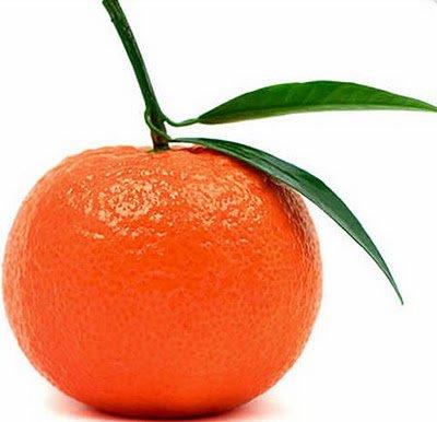 5239983_mandarini (400x386, 23Kb)