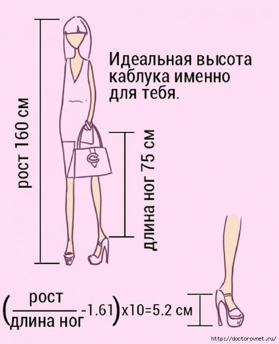 5239983_rasschet_visoti_kablyka (567x700, 183Kb)