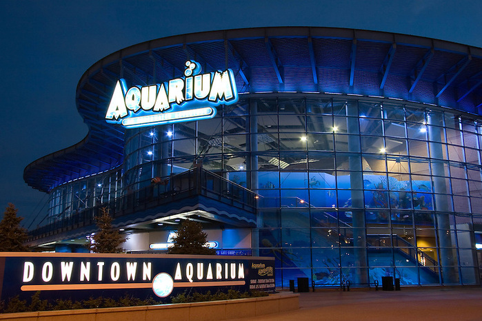 3256587_Downtown_denver_aquarium (700x466, 186Kb)
