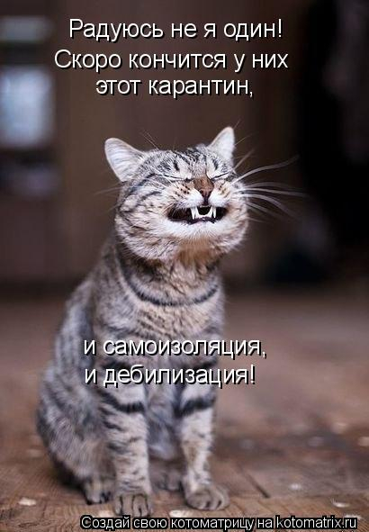 kotomatritsa_f (1) (410x591, 143Kb)