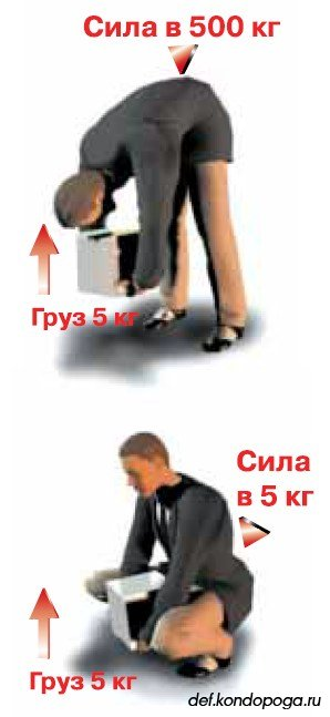 5239983_spina_nagryzka (298x647, 29Kb)