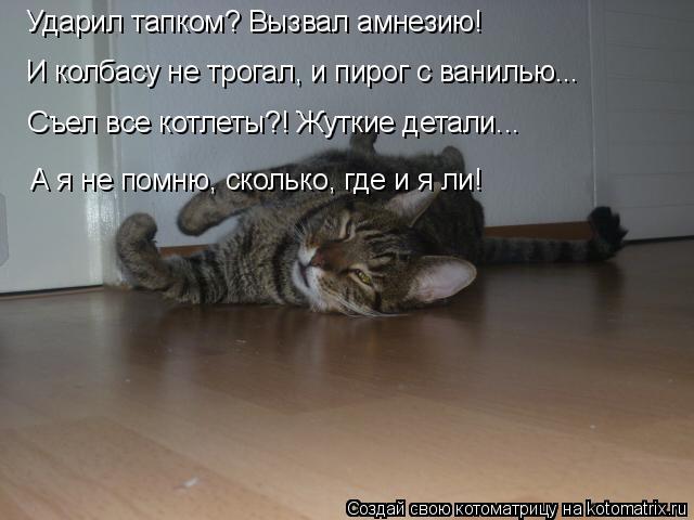 kotomatritsa_G (640x480, 141Kb)