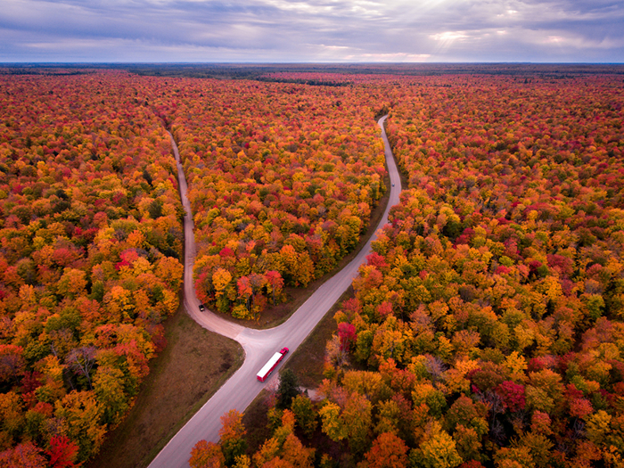 USA_Scenery_Autumn_Forests_Roads_Michigan_536529_1365x1024 (700x525, 705Kb)