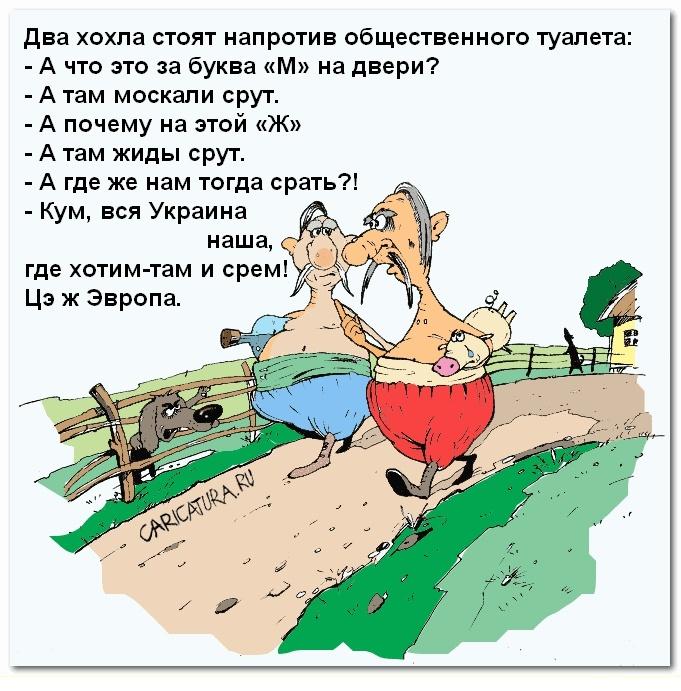 Анекдоты Про Хохлов Свежие