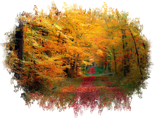 Autumn Backgrounds #1 (76) (500x382, 424Kb)