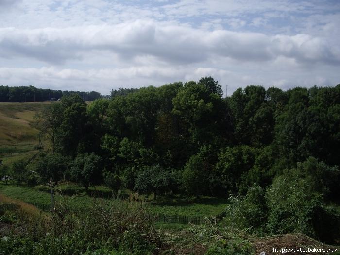Купить земельный участок в деревне Аблово Рыбновского района Рязанской области 15 соток/3024231_IMGP2782 (700x525, 293Kb)