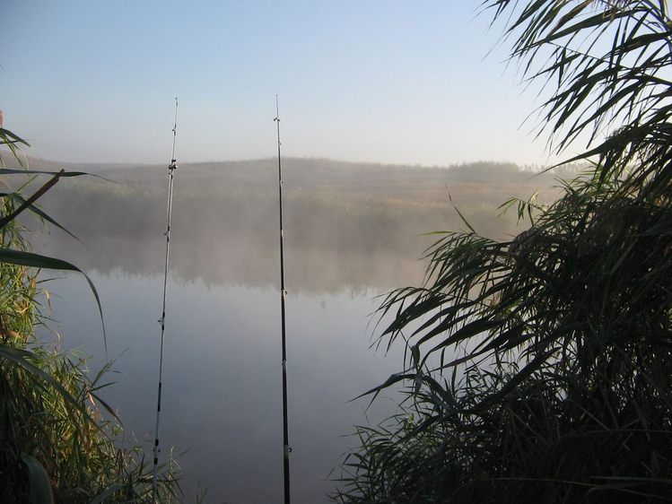 малый гок рыбалка 2016