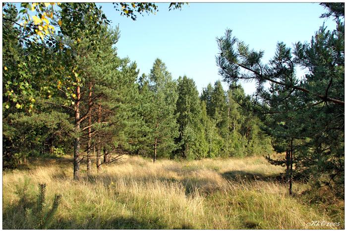 Календарь русской природы август
