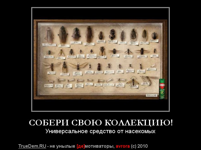 http://img0.liveinternet.ru/images/foto/b/0/124/3621124/f_19206254.jpg