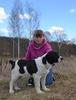 Посмотреть все фотографии серии Щенки среднеазиатской овчарки!