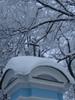 Посмотреть все фотографии серии Зима в Санкт_Петербурге