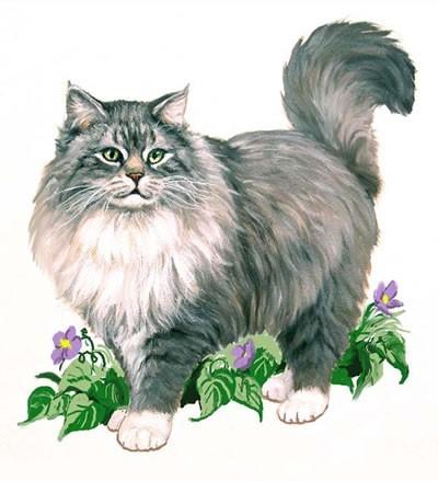 Кот породы Мяу - му В огороде ест траву.  Съел цветочки на окне И мурлыкает во сне.