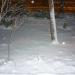 ночь..снег