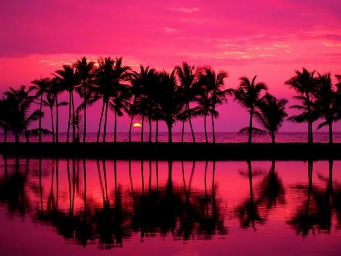 Приключения на гавайских островах порно 22 фотография