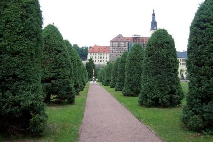 Замок Везенштайн (нем. Schloss Weesenstein) 63172