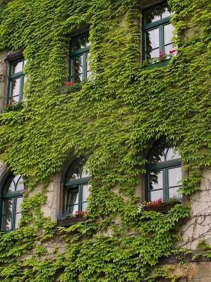 Замок Везенштайн (нем. Schloss Weesenstein) 44967