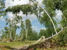 Посмотреть все фотографии серии Ураган