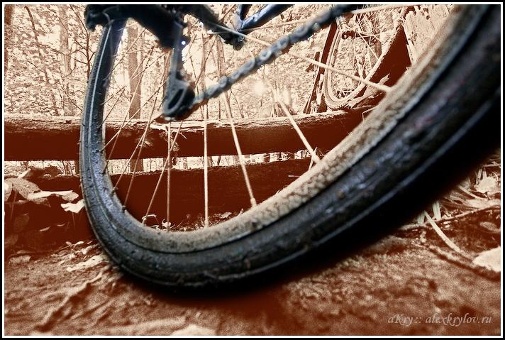 Велоизгибы