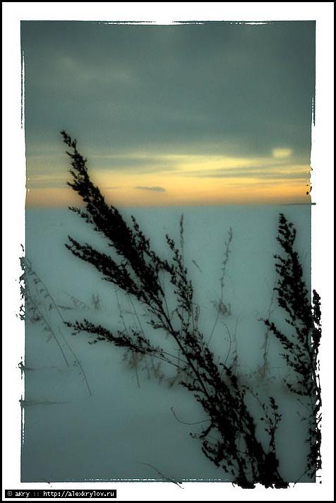 зимняя тушь
