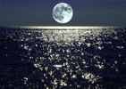 Посмотреть все фотографии серии Луна