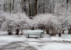 [+] Увеличить - Первый день зимы