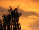 Посмотреть все фотографии серии Природа