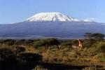 На третьем месте находится Килиманджаро. Этот спящий вулкан, покрытый потоками застывшей магмы, - самая популярная достопримечательность Танзании