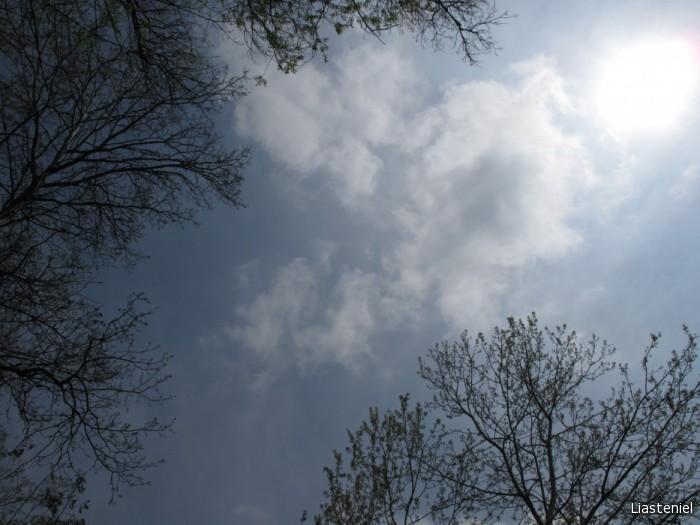 Кусочек неба (г.Прохладный) Для Эльдис.