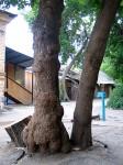 Самара, старый двор