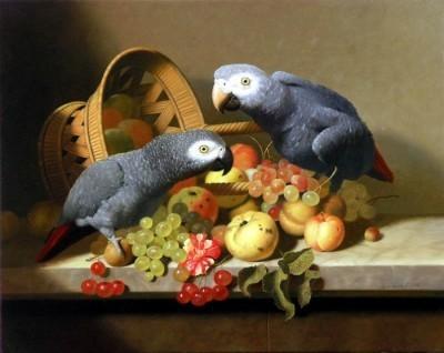 Попугаи в живописи