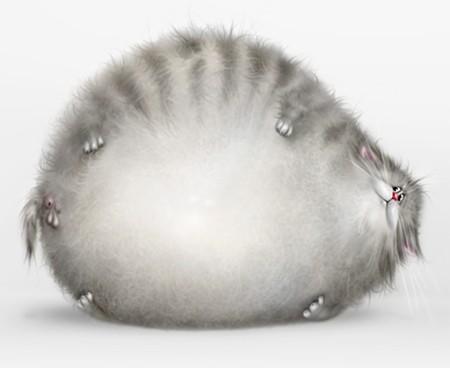 рисунок кошки:
