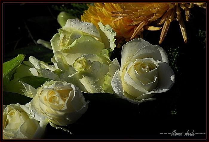 http://img0.liveinternet.ru/images/foto/b/3/apps/0/575/575404_1.jpg