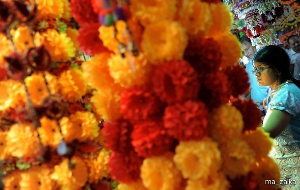 Праздник огней (Дивали)