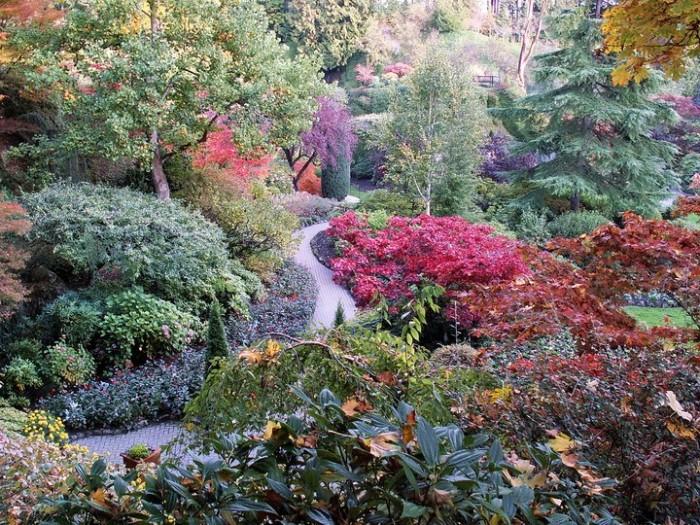 Место чарующее своей красотой и живой природой - The Butchart Gardens.