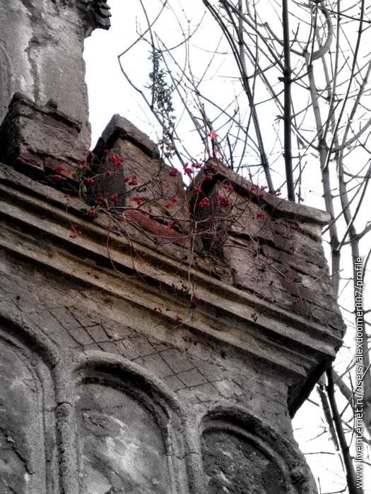 3.Тем временем на колокольне прорастает ягода...